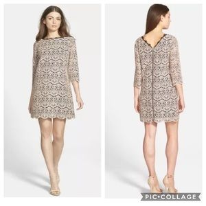 🍾 Chelsea28 Lace Shift Dress Sz S